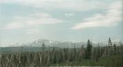 Beartooth Pass, WY 7/3/02