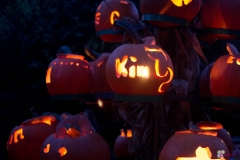 2017-10-14-Pumpkin-Glow (4 of 15)
