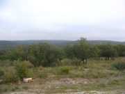 hill_046