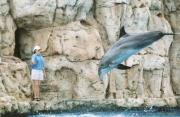 Texas State Aquarium 4/18/05