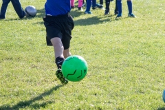 2017-10-14-Spartan-U9-Soccer-Final (8 of 134)